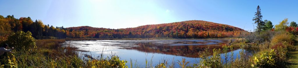 Gatineau Park during the Fall Rapture