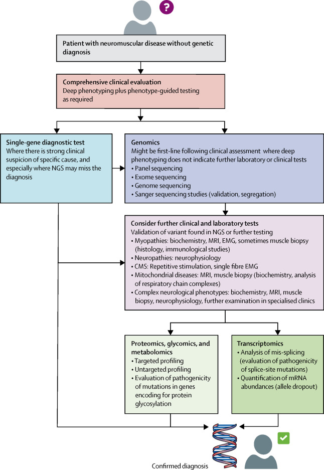 diagnostic-workflow